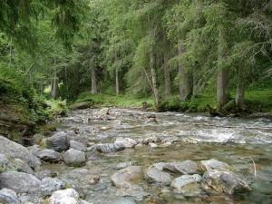 apts arizona: river