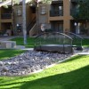 apts arizona: phesant run